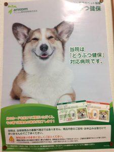 ペット保険のポスター