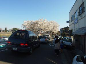 駐車場に向かう車