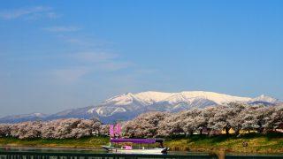 一目千本桜(宮城県大河原町)