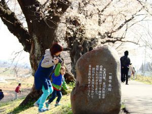 一目千本桜の謂れ