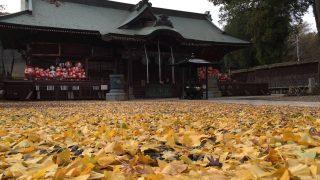 小林山達磨寺 静かでおすすめ隠れた観光スポット(群馬県高崎市)