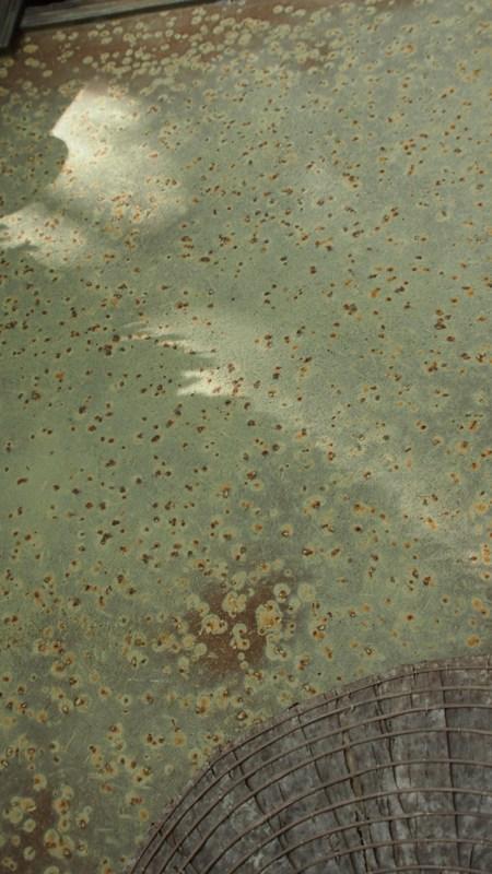 落柿舎の壁