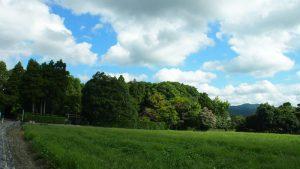 落柿舎全景