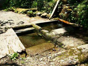 水引の清水
