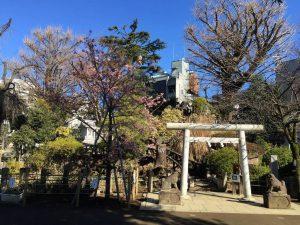 富士塚登り口