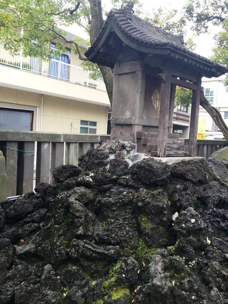 深川新富士